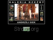 http://www.siekartgallery.cracow.pl